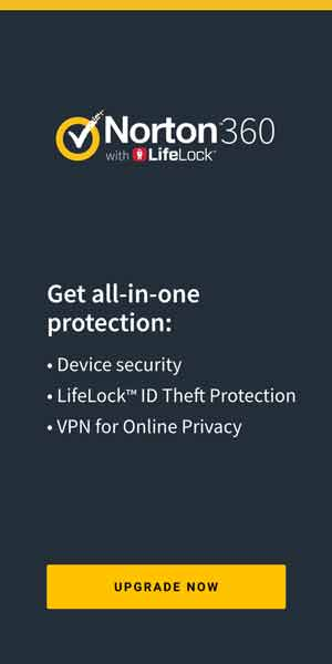 norton 360 privacy protection